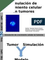 Simulación de crecimiento celular en tumores