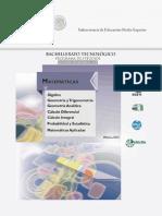 Matemticas Acuerdo 653 2013