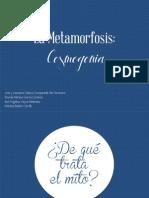 Las Metamorfosis- Cosmogonía