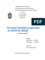 Control de Calidad Princ. Est. Informe