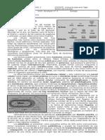 Guia 6 Bacterias y Protozoos