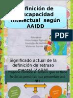 Definicion Discapacidad intelectual según Aaidd.