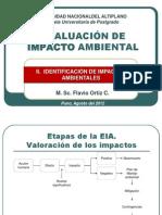 II. Identificación Impactos