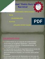 SALMONELOSIS arreglado!!.pptx
