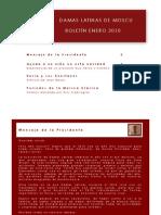 Boletín Enero 2010