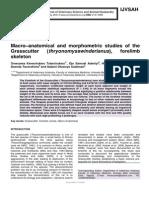 Macro–anatomical and morphometric studies of the Grasscutter (thryonomysswinderianus), forelimb skeleton