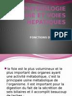 La Physiologie Du Foie Et Voies Hepatiques