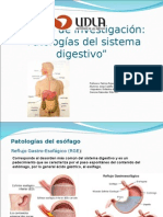 Enfermedades Sistema Digestivo Jorge Castillo