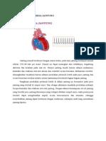 Fisiologi Cara Kerja Jantung