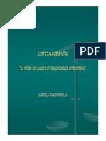11c_ggarciaminella justicia ambiental