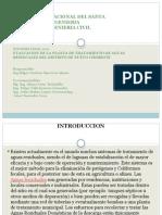 Exposicion Investigacion 2011