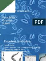 enterobius_vermicularis.ppt
