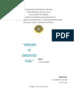 Ensayo Individual Act. 1 (Gabriela Bastardo)