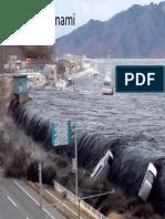 #8 Tsunami