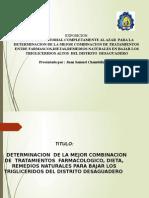 DCA EXPOSICION OFICIAL 1.pptx