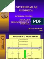 Seminario y Traslado Neonatal_2012