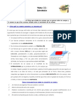 tema_11.pdf