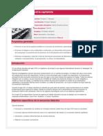 El trabajo en la industria capitalista-1.pdf
