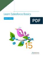 SalesForce Basics