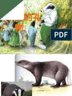 獾的礼物.ppt