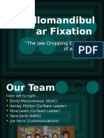 Fixation Powerpoint