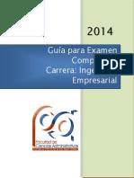Guia Ingenieria Empresarial