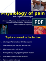 Pain Physiology