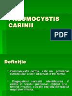 CursVI Pneumocystis Carinii