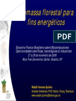 Projeto - Ibama - Biomassa