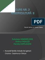 CURS 2 Arbori II pp