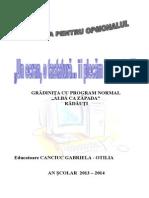 Opțional 2013-2014 Calculator, Gabi