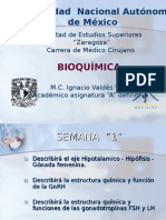 PPPP S-1.ppt
