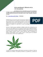Por Qué Es Ilegal La Marihuana