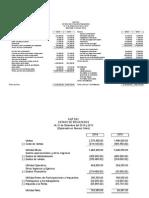Caso Analisis EEFF - Formatos