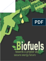 limitation of using biofuels and ethanol as a trasportation Fuel