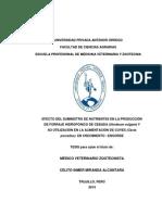 1_MIRANDA_CELITO_SUMINISTRO_NUTRIENTES_2014_OPC11111.pdf