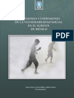 Reflexiones y expresiones de la vulnerabilidad social en el sureste de México