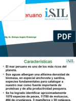elmarperuano-101205131624-phpapp01