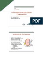 1- Enfermedades Oftalmologicas Ocupacionales