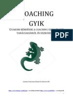 Wiesner Edit - Coaching Gyakori Kérdések - Lemma Coaching