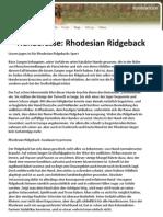 Hunderasse Rhodesian Ridgeback