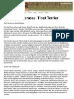 Hunderasse Tibet Terrier