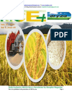 27th July (Monday),2015 Daily Exclusive ORYZA Rice E-Newsletter by Riceplus Magazine