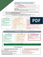 UNC ED Pediatric Asthma Protocol