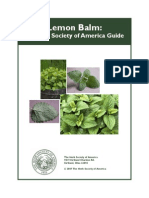lemon balm guide