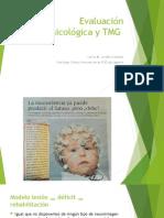 Evaluación Neuropsicológica y TMG