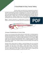 Zebrafish Drug Toxicity