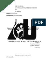 CONSECUENCIAS EN LA ECOLOGÍA HUMANA SEGÚN ANÁLISIS DEL INFORME DEL FINANCIAMIENTO DE LA POLÍTICA EN GUATEMALA CICIG, 2015