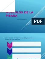 MUSCULOS DE LA PIERNA.pptx
