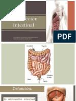 6. Obstrucción Intestinal (Invaginación, Cuerpos Extraños, Neoplasias y Volvulos) (1)